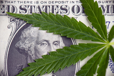 marijuana leaf on dollar bill
