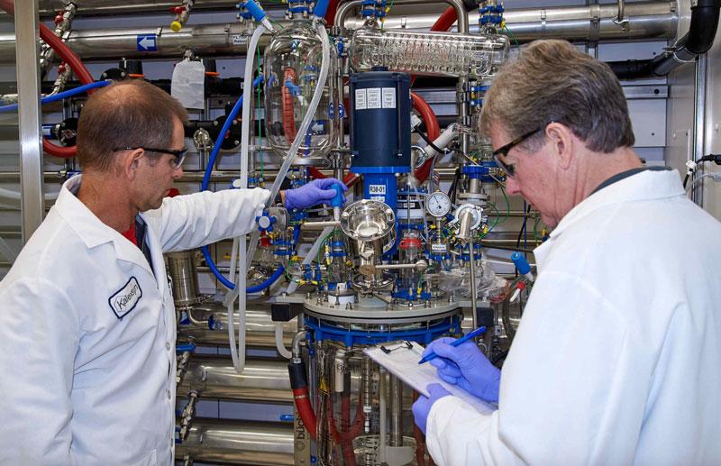 scientists at Kalexsyn's new facility