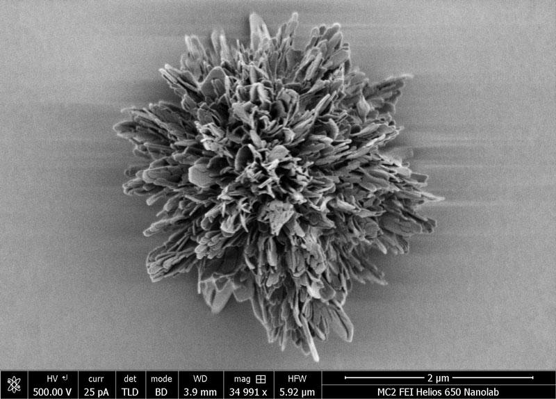 U-M microparticle