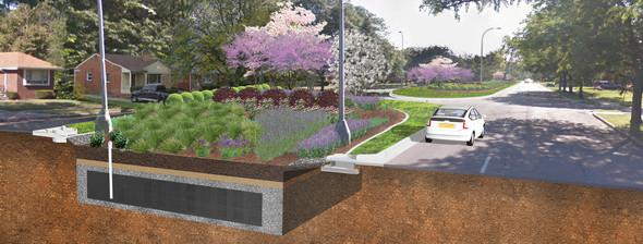 Oakman project rendering