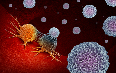 white blood cells and tumor cells stock illustration