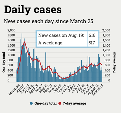 graph of the number of coronavirus cases in Michigan