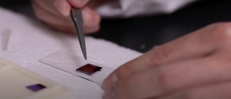 U-M self-erasing chip