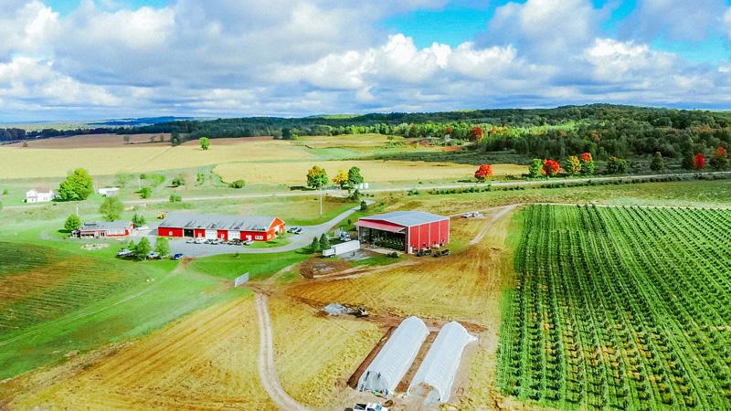 Skymint Farms