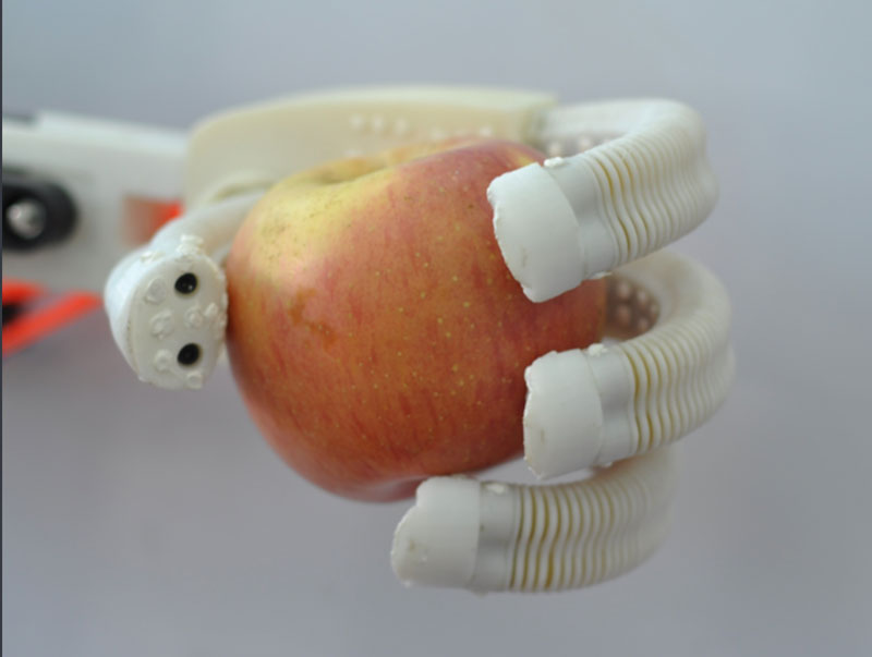 soft robot hand holding apple