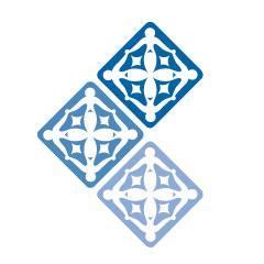 Center for Arab American Philanthropy logo