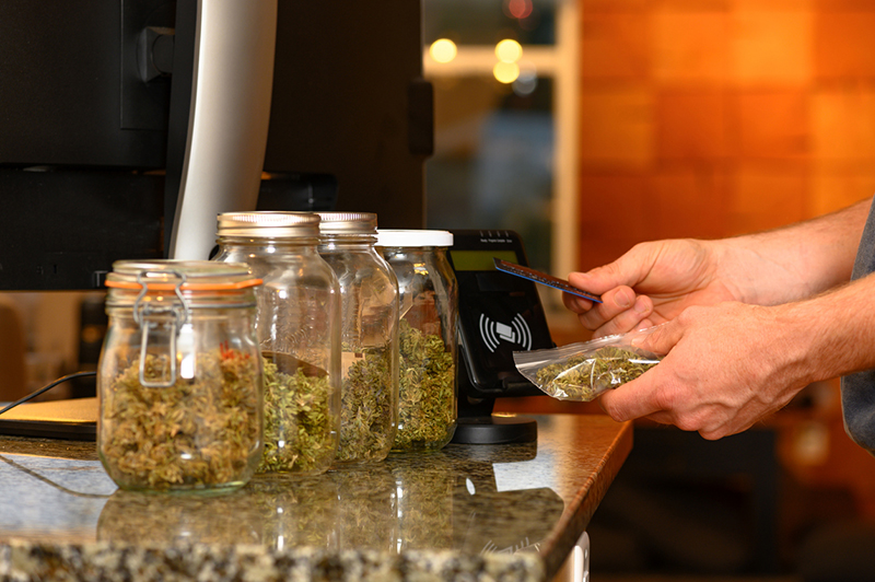 A report by Anderson Economic Group showed licensed cannabis was a $3.2 billion industry in 2020. // Stock Photo