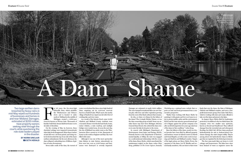 """""""A Dam Shame"""" in the November/December issue of DBusiness won a Gold Award in the annual AABP competition. // File photo"""