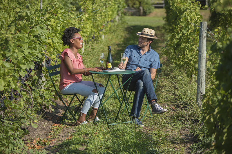In Vino Veritas - Michigan's wine industry has been expanding, with 3,375 wine grape acres, up 10 percent from 2016. // Courtesy of Mawby Vineyards
