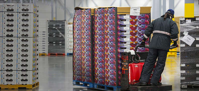 Photo of worker moving boxes in temperature controlled containers.