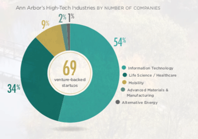 Information technology companies make up the majority of Ann Arbor's high-tech companies: // Graphic courtesy of EntryPoint